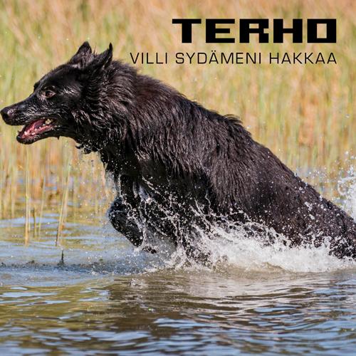 Terho-Villi-sydämeni-hakkaa-cover-final-500x500